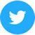 Twitter Icon (50)